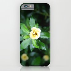 Open up iPhone 6s Slim Case
