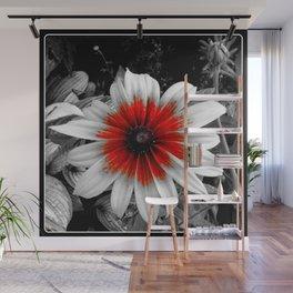 Red Stroke Gaillardia Flower | Nadia Bonello Wall Mural