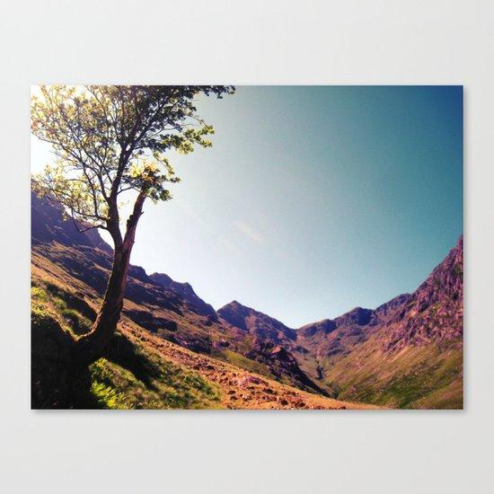 tree side. Canvas Print