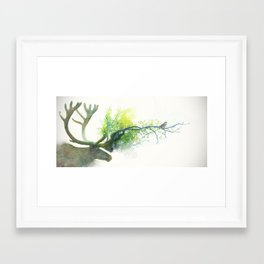 Caribou Framed Art Print