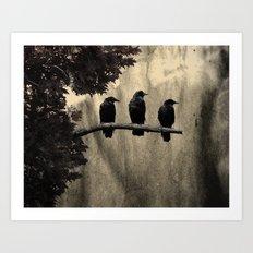 Three Like Minded Crows Art Print