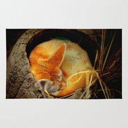 Napping Fenec Fox Rug