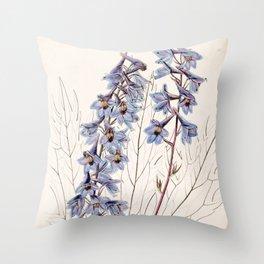 Delphinium elatum palmatifidum/Delphinium intermedium palmatifidum Throw Pillow