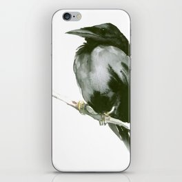 RAVEN on the tree iPhone Skin