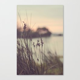 Last Light Fades The Day Away Canvas Print