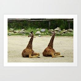 Giraffe Twins Art Print