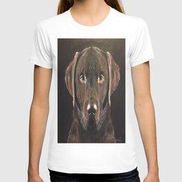 Classic Chocolate Labrador T-shirt