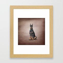 Drawing Doberman dog Framed Art Print