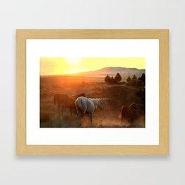 Sunset on Horses Photography Print Framed Art Print
