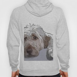 Shaggy Dog Hoody