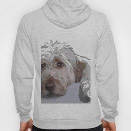 Shaggy Dog Hoody