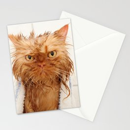 Wet Persian Cat Stationery Cards