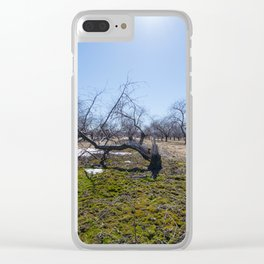Winter Orchard Clear iPhone Case