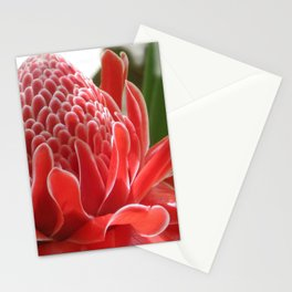 Laos Flower Stationery Cards