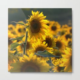 A Time For Peace Metal Print