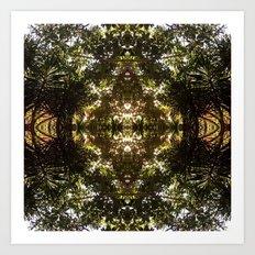 Diamond Of Trees, Ferns at ease.  Art Print