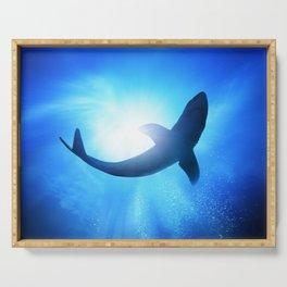 Shark Serving Tray