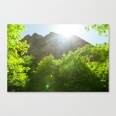 Fremont Cottonwood Trees II (Zion National Park, Utah) Canvas Print
