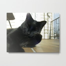 I don't always eat catnip.... Metal Print