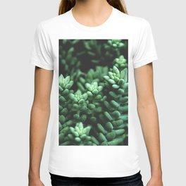 Succulent plants T-shirt