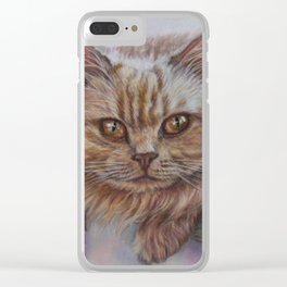 Cattitude - Long Haired Cat Staring at You Clear iPhone Case