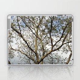 the lightbrown twin Laptop & iPad Skin
