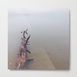 Log in Water Metal Print