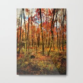 Fall Forest 2014 Metal Print