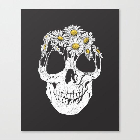 pushing daisies Canvas Print