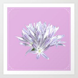 Flower | Pink Chive Floral | Nadia Bonello Art Print