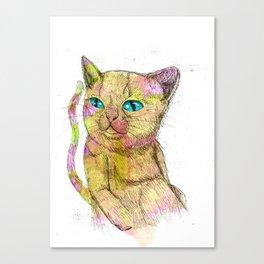 Coloured Cat Canvas Print