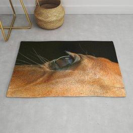 Horse eye on black background Rug
