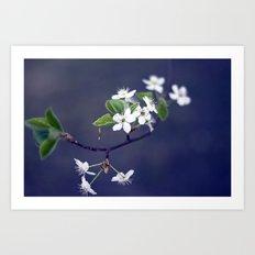 white ii. Art Print