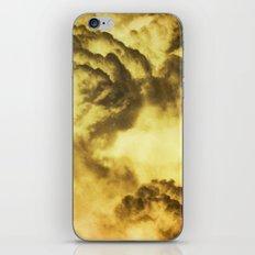 Malo iPhone & iPod Skin