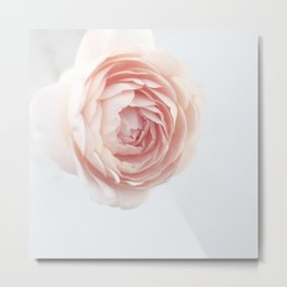 Rosey outlook Metal Print