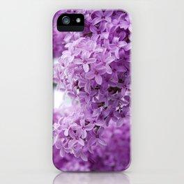 lilacs up close iPhone Case