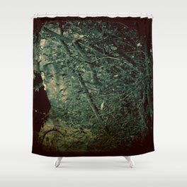 Into the Enchanted Forest Shower Curtain