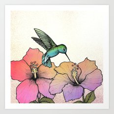 Hummingbird and Hibiscus Art Print