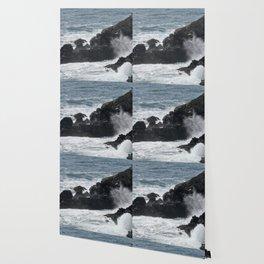 Waves Crashing on the Coast Wallpaper