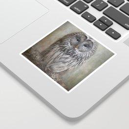 Ural Owl ( Grey owl ) Sticker