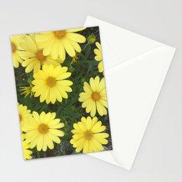 Sidewalk Sunshine Stationery Cards