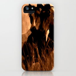 Horse Spirits iPhone Case