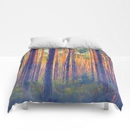 Forest - Filtering light Comforters