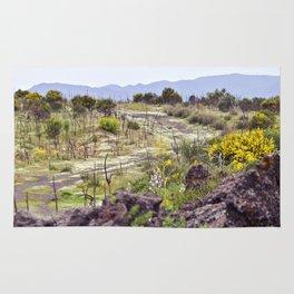 Sicilian Volcano Etna Rug