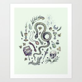 Slytherin, Those Cunning Folk Art Print