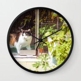 Cat Behind Glass Door Wall Clock