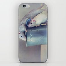 Jimmy and Snoozy iPhone & iPod Skin