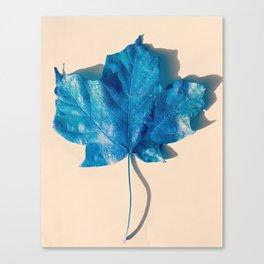 Blue Leaf 3 Canvas Print