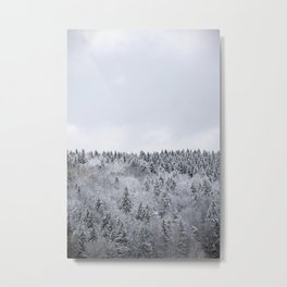 white winter FOREST Metal Print