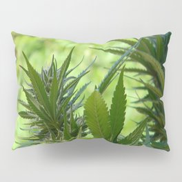 Beauty is in the eye of the beholder... Pillow Sham